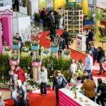 Targi ogrodnicze, florystyczne i dekoracyjne