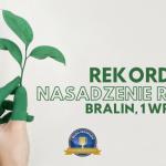 W Bralinie będą sadzić rośliny i bić Rekord Polski